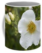 Cherokee Rose With Rain Drops Coffee Mug