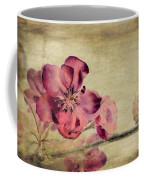 Cherry Blossom With Textures Coffee Mug by John Edwards