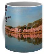 Cherry Blossoms 2013 - 001 Coffee Mug