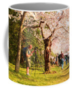 Cherry Blossoms 2013 - 009 Coffee Mug