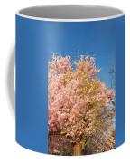 Cherry Blossoms 2013 - 016 Coffee Mug