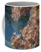 Cherry Blossoms 2013 - 035 Coffee Mug