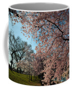 Cherry Blossoms 2013 - 038 Coffee Mug