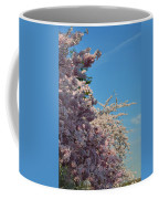 Cherry Blossoms 2013 - 046 Coffee Mug