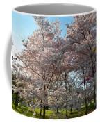 Cherry Blossoms 2013 - 049 Coffee Mug