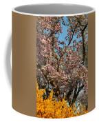 Cherry Blossoms 2013 - 051 Coffee Mug