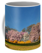 Cherry Blossoms 2013 - 052 Coffee Mug