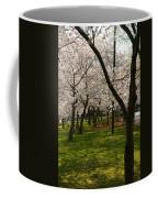 Cherry Blossoms 2013 - 057 Coffee Mug