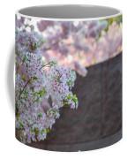 Cherry Blossoms 2013 - 066 Coffee Mug