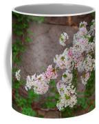 Cherry Blossoms 2013 - 067 Coffee Mug