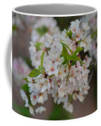 Cherry Blossoms 2013 - 068 Coffee Mug