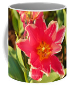 Cherry Blossoms 2013 - 093 Coffee Mug