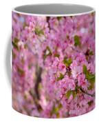 Cherry Blossoms 2013 - 096 Coffee Mug
