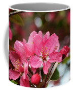 Cherry Blossoms And Greeting Card Blank Coffee Mug