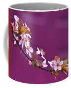 Cherry Blossoms And Plum Door Coffee Mug