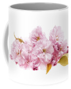 Cherry Blossoms Arrangement Coffee Mug