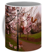 Cherry Blossoms At Kirkland In Kendal Coffee Mug