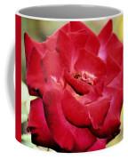 Cherry Cream Rose Coffee Mug