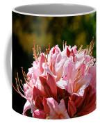 Cherry Mist Azalea Coffee Mug