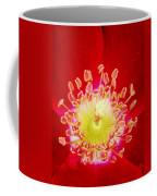 Cherry Pie Rose 03a Coffee Mug