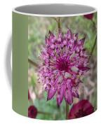 Cherry-queen Of The Prairie Flower Coffee Mug
