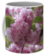 Cherry Tree Blossoms Coffee Mug