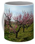 Cherry Trees Coffee Mug