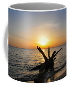 Chesapeake Bay Driftwood At Sunset Coffee Mug