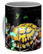 Chesapeake Box Turtle Coffee Mug