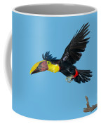 Chestnut-mandibled Toucan Coffee Mug