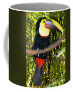 Chestnut Mandibled Toucan Coffee Mug