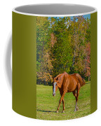 Chestnut Red Horse Coffee Mug