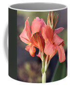 Chicago Botanical Gardens - 79 Coffee Mug by Ely Arsha