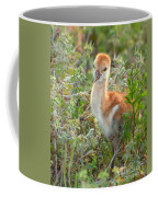 Chick 107 Coffee Mug