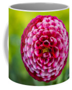 Chick A Dee Dahlia Coffee Mug