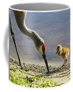 Chick At The Lake Coffee Mug