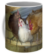 Chick Trio  Coffee Mug