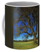 Chickamauga Battlefield Coffee Mug by Mountain Dreams