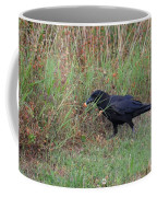 Chicken Eating Crow Coffee Mug