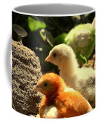 Cute Chicks Coffee Mug