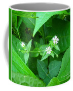 Chickweed Trio Coffee Mug