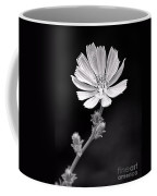 Chicory Wildflower Coffee Mug
