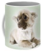 Chihuahua Dog Coffee Mug