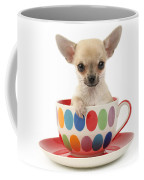 Chihuahua In Cup Dp684 Coffee Mug by Greg Cuddiford