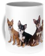 Chihuahuas Dogs Coffee Mug