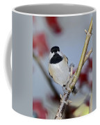 Chikadee On A Limb Coffee Mug