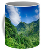 Chimney Tops Mountain In Great Smoky Mountains  Coffee Mug