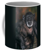 Chimpanzee Portrait Endangered Species Wildlife Rescue Coffee Mug