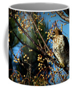 China Berry Hawk Coffee Mug