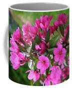 Chinese Apple Blossoms Coffee Mug
